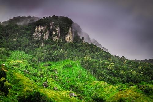 A la découverte de Madagascar paysage