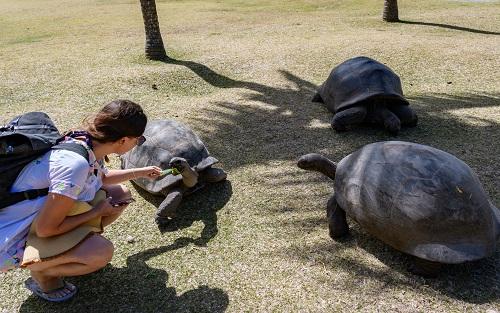 Voyage tout-compris aux Seychelles avec Club Med